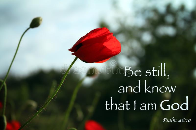 Be Still and Know stock photo
