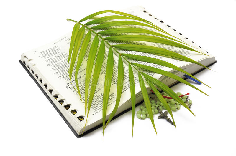 Download Bible Rosary Palm Sunday Royalty Free Stock Photography - Image: 21005827