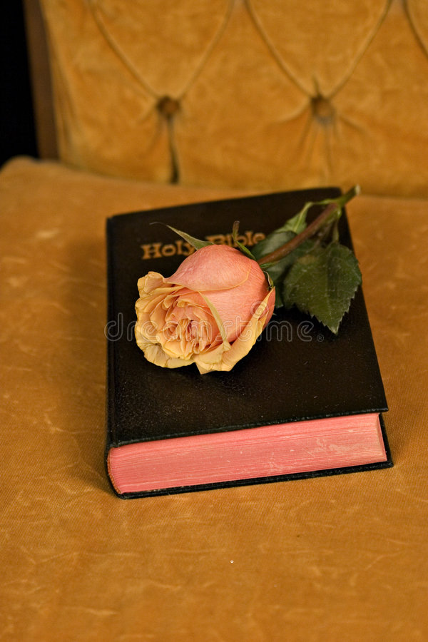 Download Bible and roses stock photo. Image of lamp, flower, religion - 574404