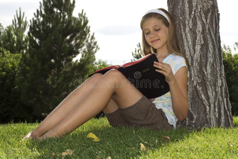 Bible Study royalty free stock photos