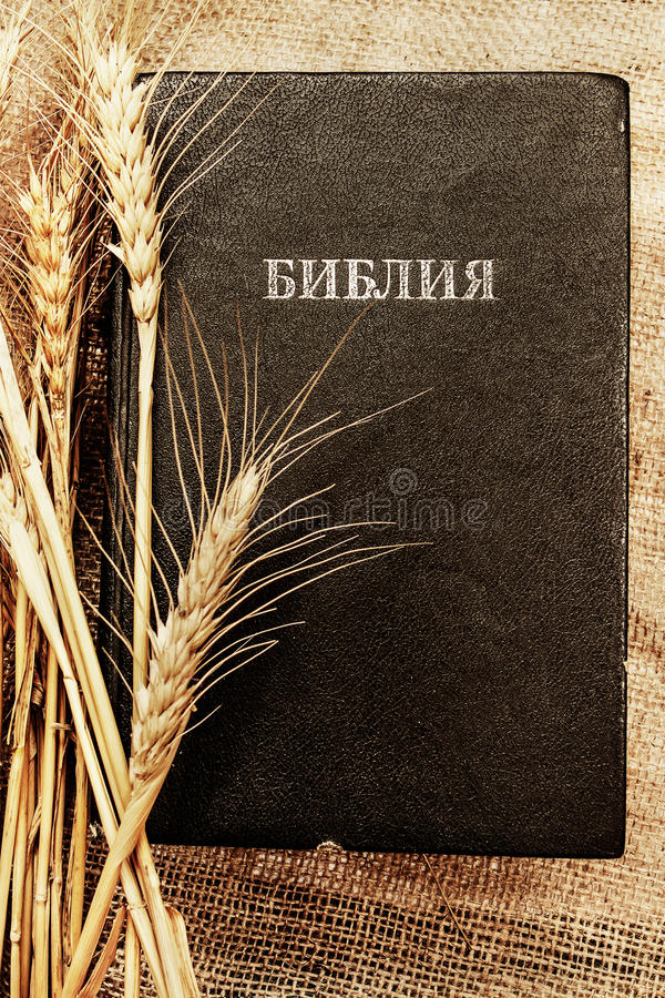 Bible_with_wheat foto de archivo