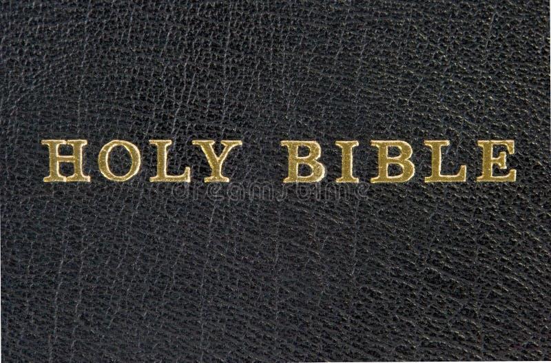 biblia święta zdjęcie royalty free