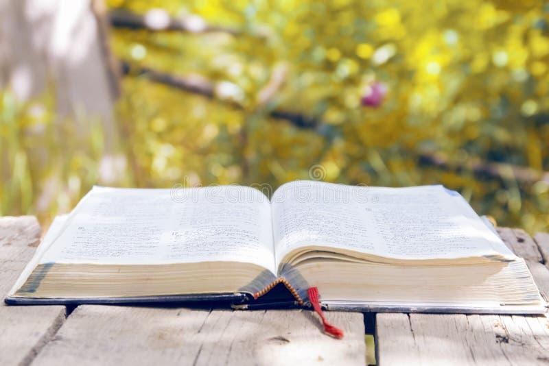 Biblia que brilla intensamente abierta en naturaleza imagenes de archivo