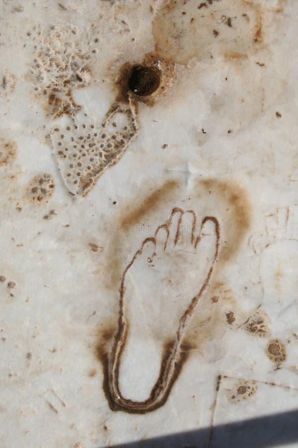 Biblijny Ephesus fotografia royalty free