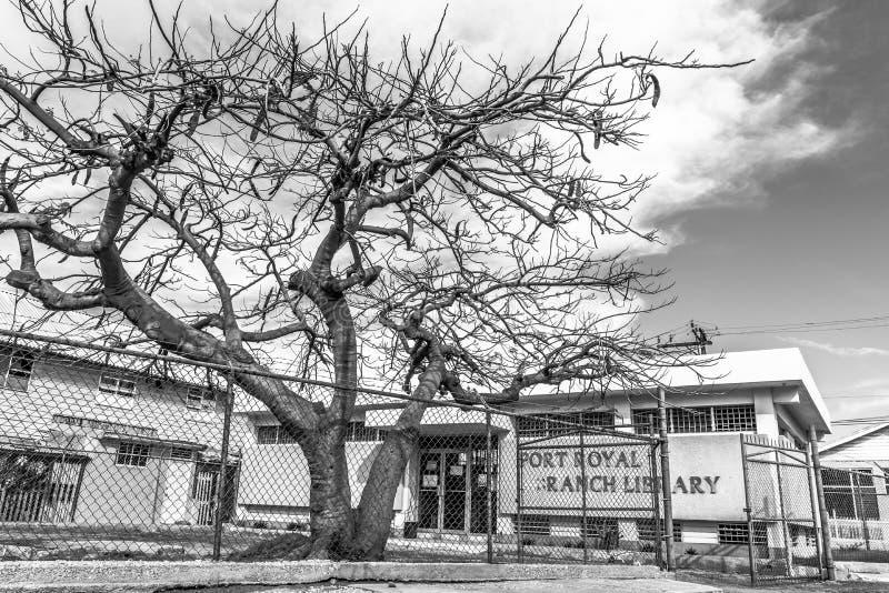 Biblioteca de ramo de Port Royal em Kingston Jamaica fotografia de stock royalty free