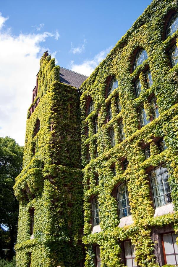 Biblioteca de universidade 02 de Lund imagens de stock royalty free