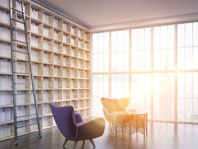 Biblioteca della Camera a città di New-York illustrazione di stock