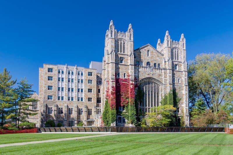 Biblioteca escolar da lei da Universidade do Michigan fotografia de stock royalty free