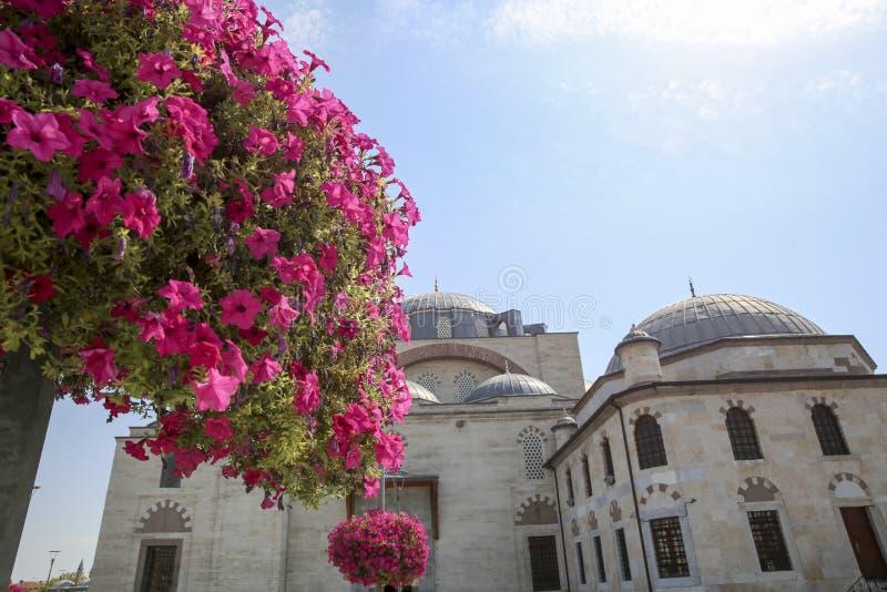Biblioteca Konya Turqu?a de Yusuf Aga de la mezquita de Selimiye fotos de archivo libres de regalías