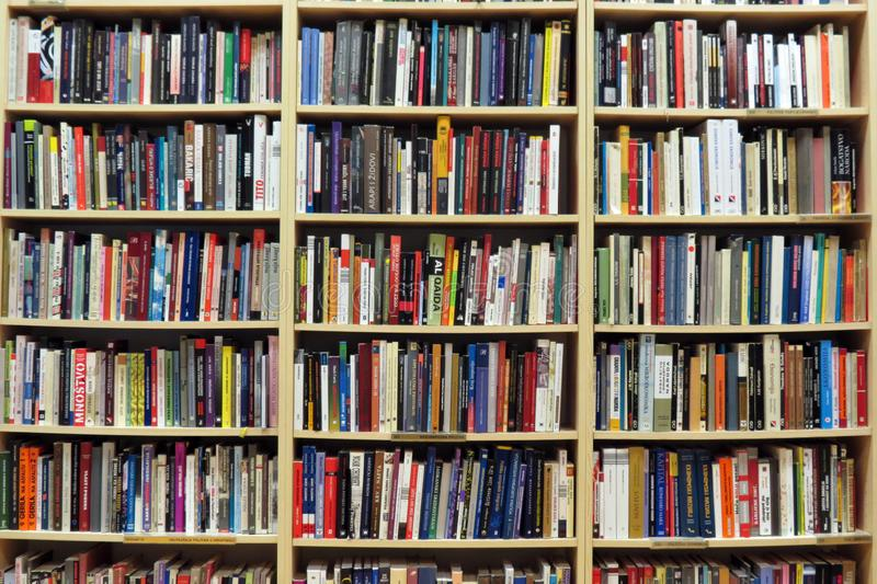 Biblioteca na biblioteca fotografia de stock royalty free