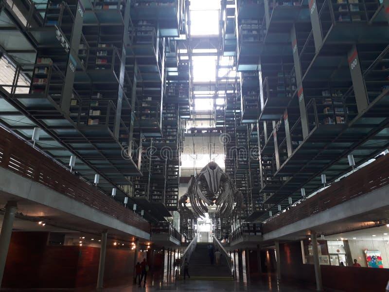 Biblioteca Vasconcelos immagini stock libere da diritti