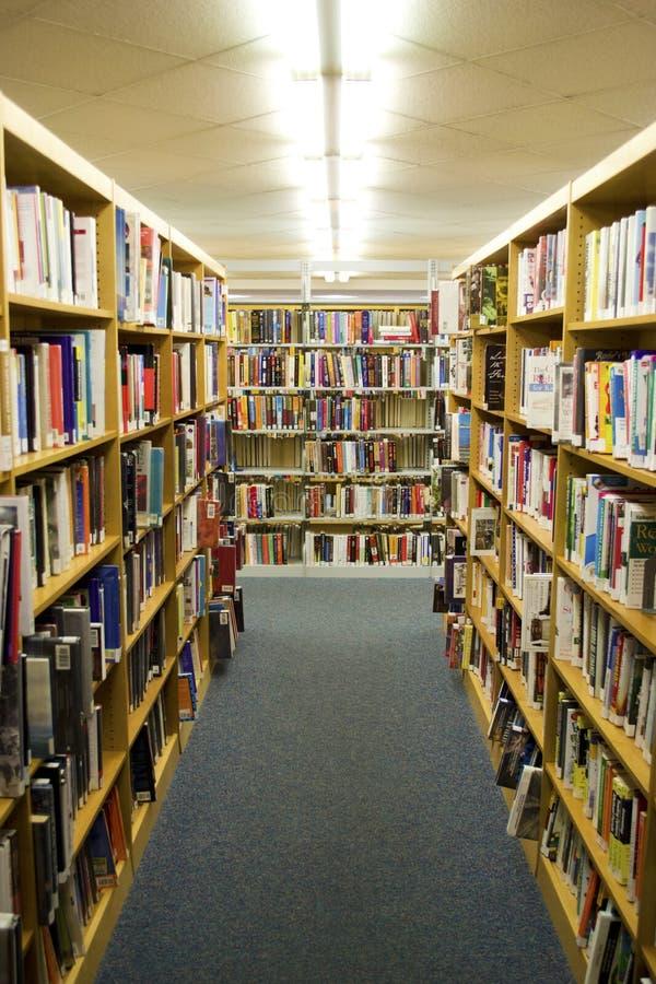 Bibliotecas em uma biblioteca foto de stock royalty free