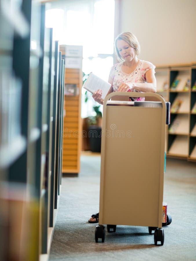 Bibliotekarie Working In Library royaltyfria bilder