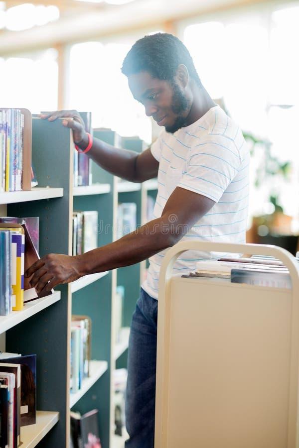Bibliotekarskie ułożenie książki W bibliotece obraz royalty free