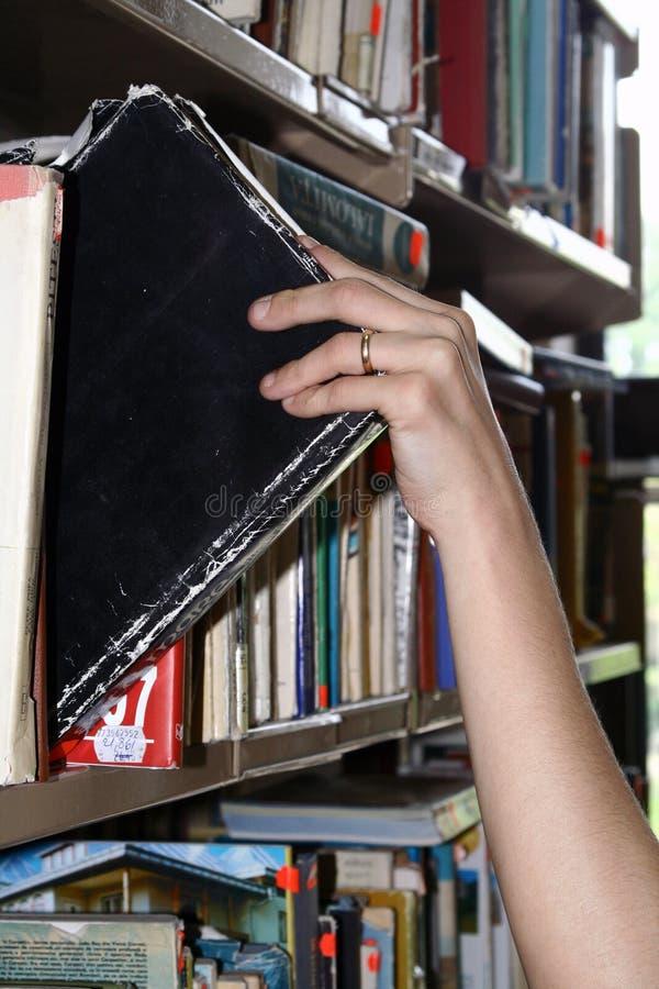 bibliotekarz fotografia stock