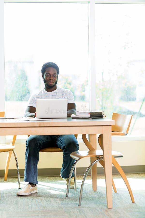 Bibliothèque d'Using Laptop In d'étudiant photographie stock libre de droits