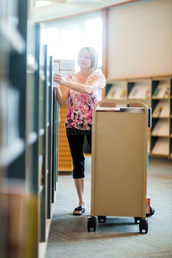 Bibliothekar-Arranging Books In-Bibliothek stockbild