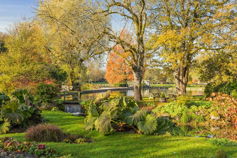 Bibury Trout Farm, Gloucestershire, England. A roadside view in autumn into the grounds of Bibury Trout Farm that has thirteen trout pools and covers an area royalty free stock photos