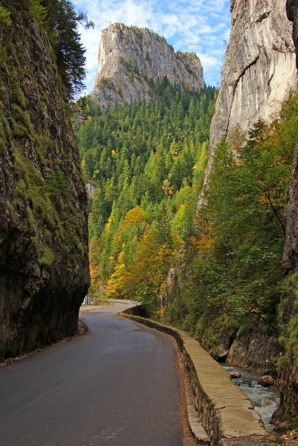 bicaz弯曲的峡谷路垂直墙壁 免版税库存照片