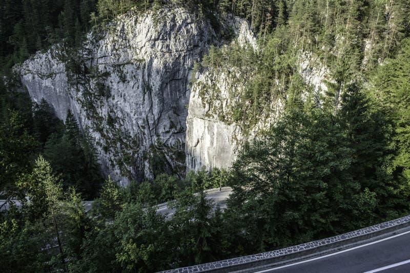 Bicaz, Румыния, Европа, ущелья стоковое фото rf