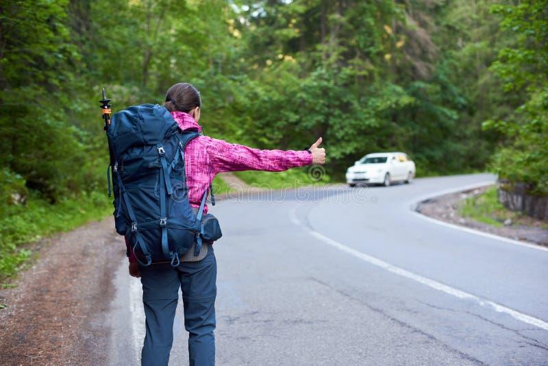 Bicaz que viaja Canyon Road fotografía de archivo libre de regalías