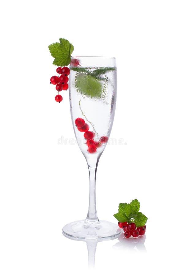 Bicchiere d'acqua di rinfresco con il ribes isolato in un vetro per champagne fotografie stock libere da diritti