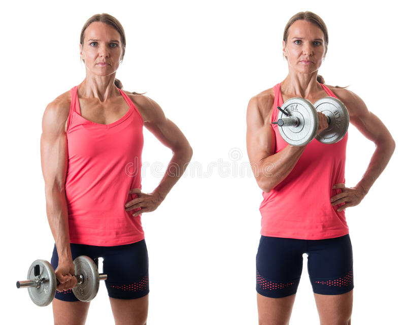 Bicep Curl. Exercise. Studio shot over white royalty free stock photography