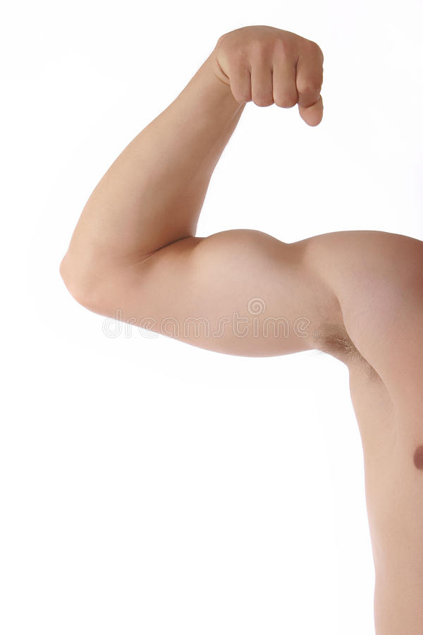 Bicep muscle stock photo