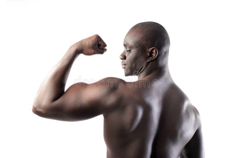Download Biceps stock image. Image of arms, nerve, profile, back - 18470271