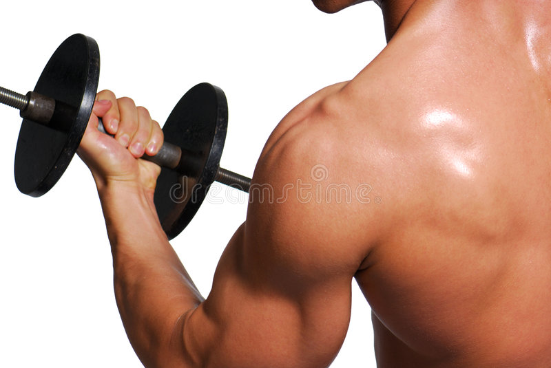 Download Biceps stock image. Image of power, school, isolated, dumbbells - 3671299