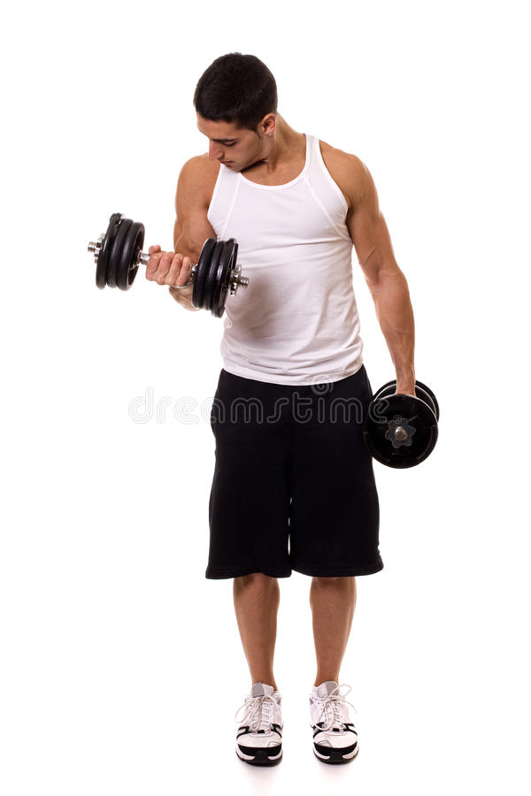 Biceps Curl. Exercise. Studio shot over white royalty free stock image