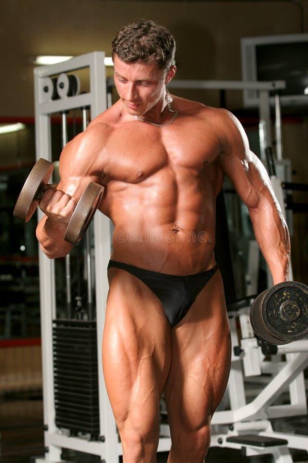 Biceps, dumbell, alternate, cu. Training shot of a young man in the gym - biceps, dumbell, alternate, curls stock photo