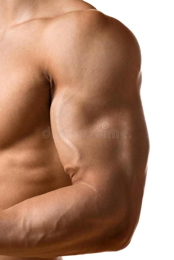 Biceps muscle of young man stock photos