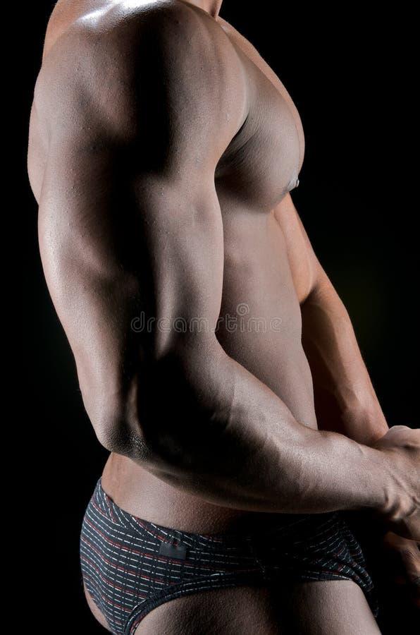 Bicepsen en schaduwen stock afbeeldingen
