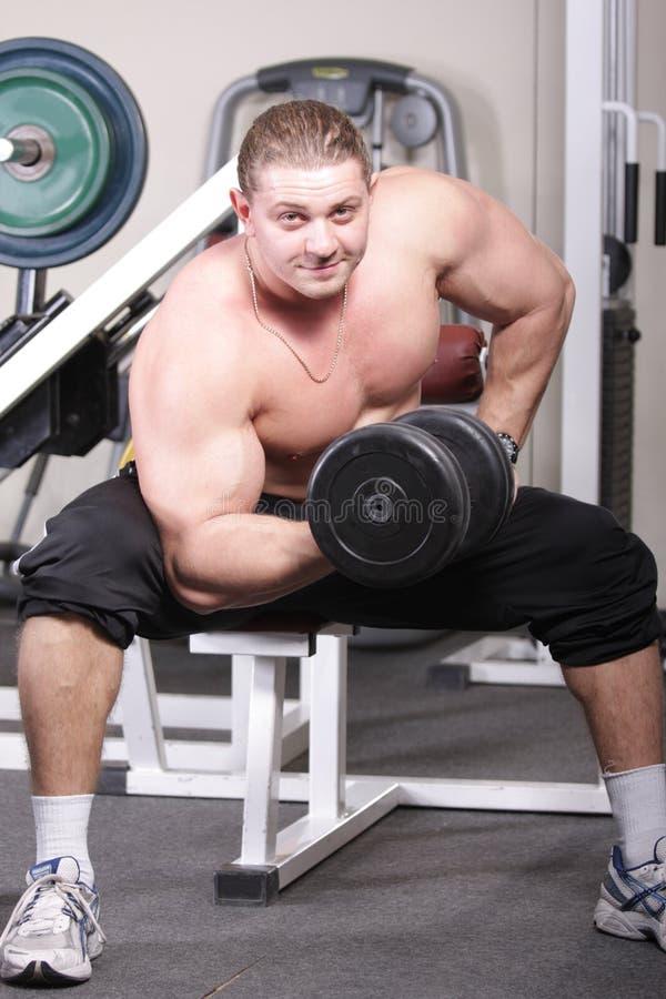 bicepsutbildning royaltyfria bilder