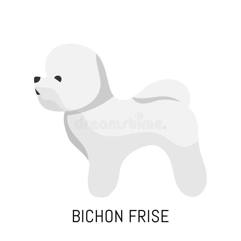Bichon Frise Cane, icona piana Isolato su priorità bassa bianca immagine stock