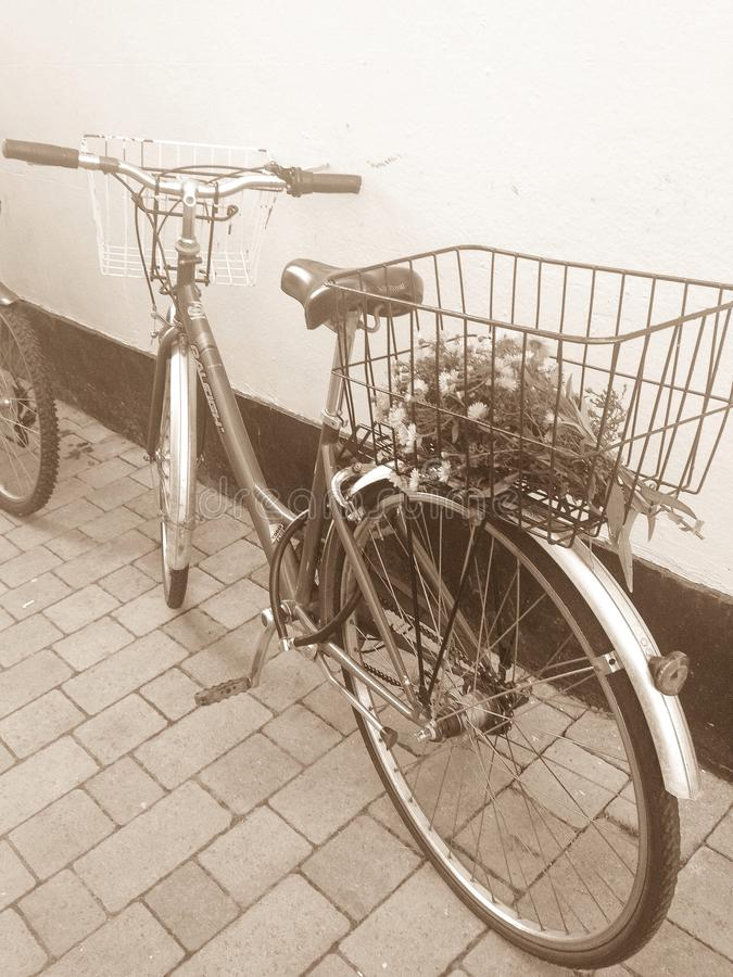 Bici fotos de archivo