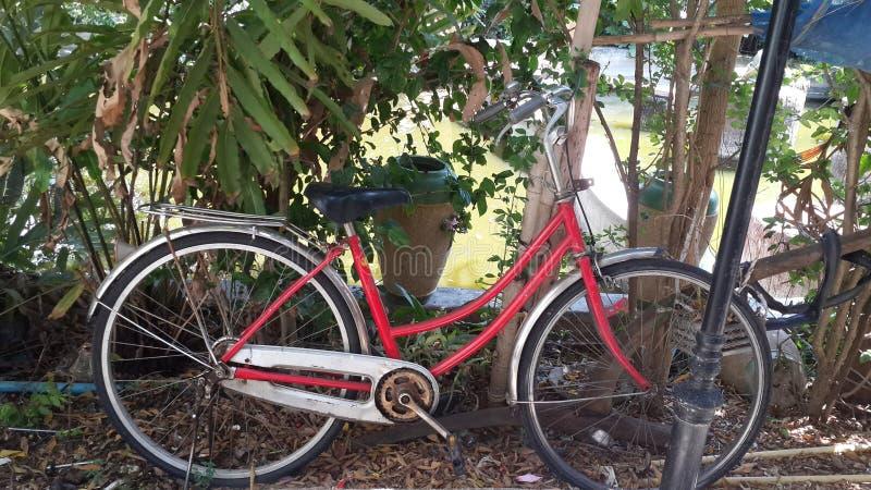 Bici fotografía de archivo libre de regalías