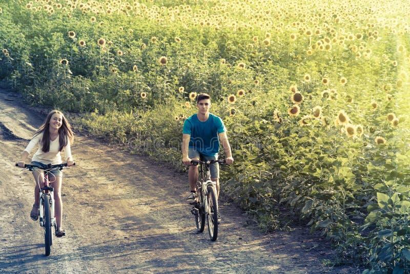 Bici adolescente del montar a caballo de los pares en campo del girasol fotos de archivo libres de regalías