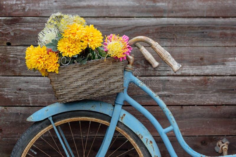 Bici blu d'annata arrugginita con il canestro dei fiori immagini stock libere da diritti
