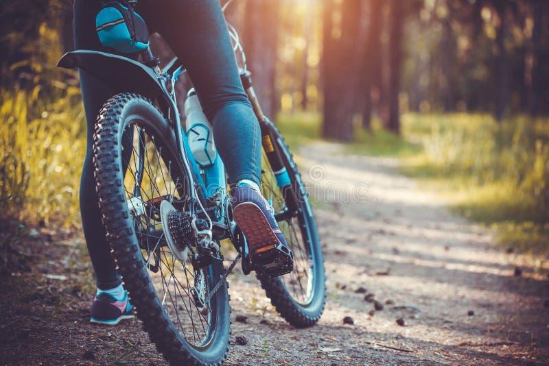 Bici de montaña del montar a caballo del ciclista en el bosque imagenes de archivo
