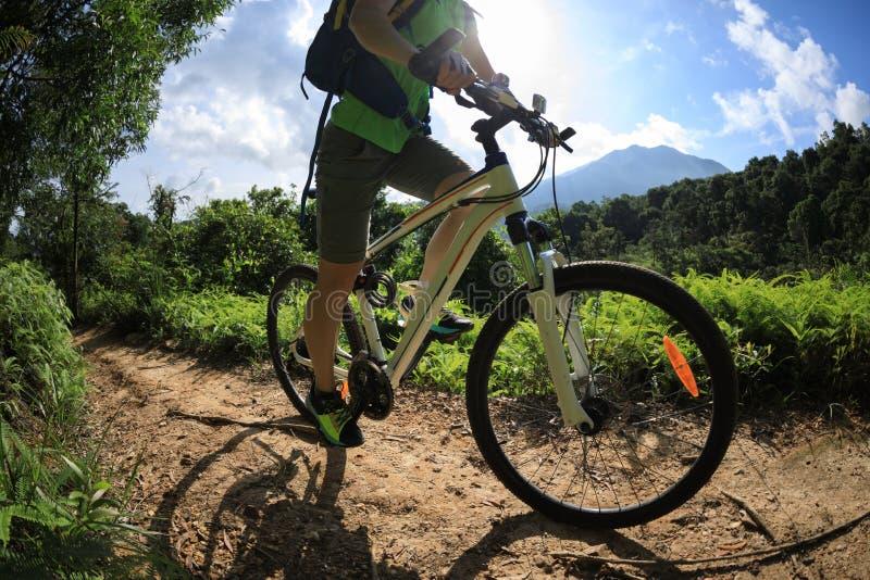 Bici de montaña que monta encima de la colina foto de archivo