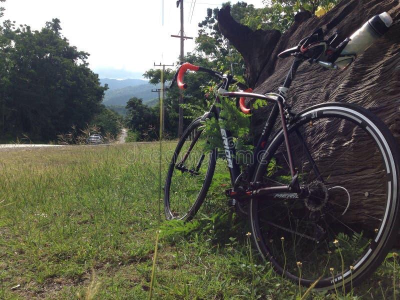 Bici del camino en la montaña fotos de archivo libres de regalías