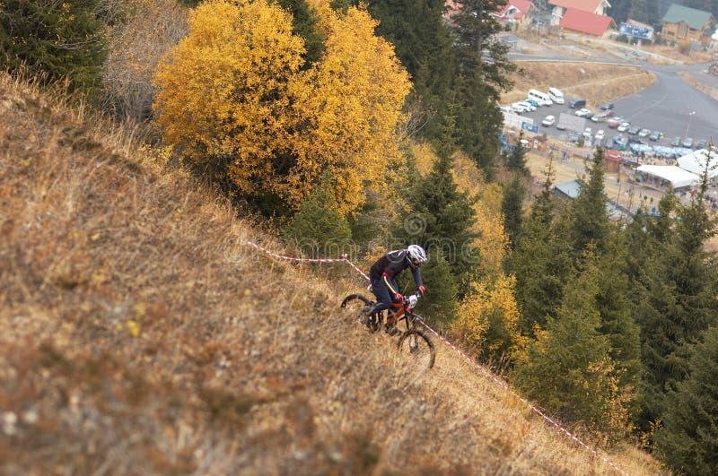 Bici di montagna in discesa immagini stock libere da diritti