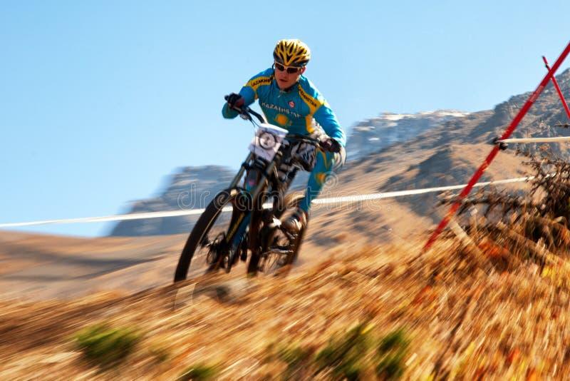 Bici di montagna in discesa fotografia stock