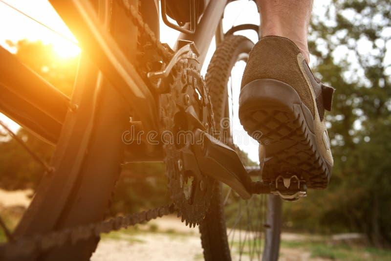 Bici di vendita dell'uomo di retrovisione immagine stock libera da diritti