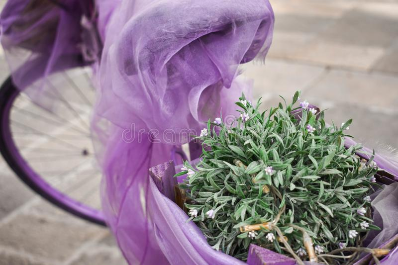 Bici púrpura del vintage con las plantas en ella foto de archivo
