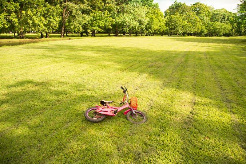 Bici rosada que cae en hierba verde en el parque imagen de archivo