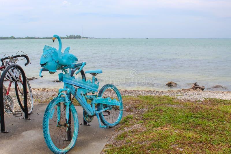Bicicleta azul dos peixes - parque da chave do pássaro - Sarasota Florida fotografia de stock royalty free