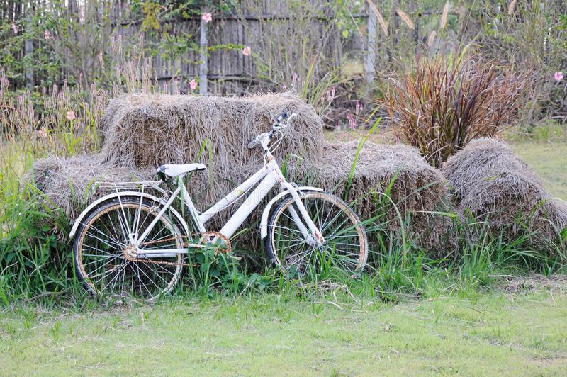 Bicicleta branca velha imagem de stock
